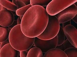 Гемоглобин - важное вещество в крови.