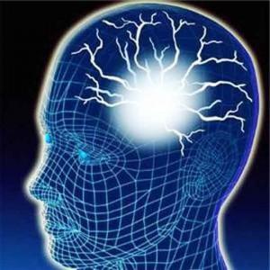 Здоровый мозг и хорошая память.