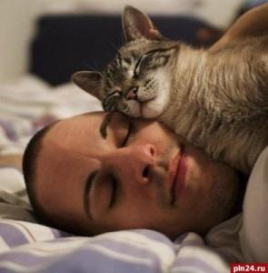 Как хорошо поспать?