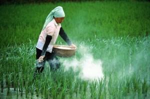 Какие пестициды считаются опасными?