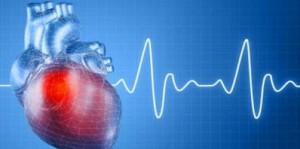 Тестостерон и сердце